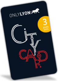 Lyon City Card 3 días : Adulto